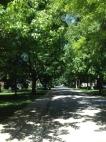 Health & Nutrition Community Neighborhood Wellness Stress Relief